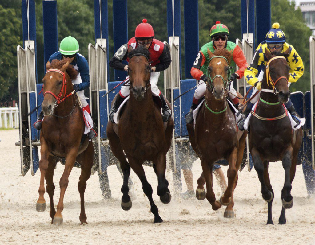 Robin Ganzert, CEO of American Humane on Thoroughbred horse races